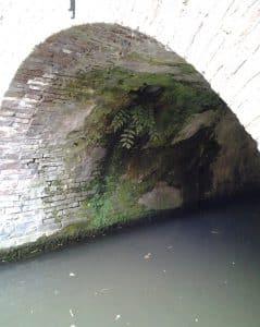 varen onder brug